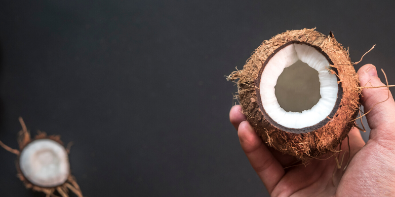 coconut in a hand