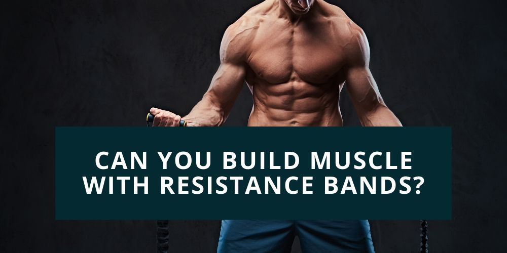 resistance bands muscle