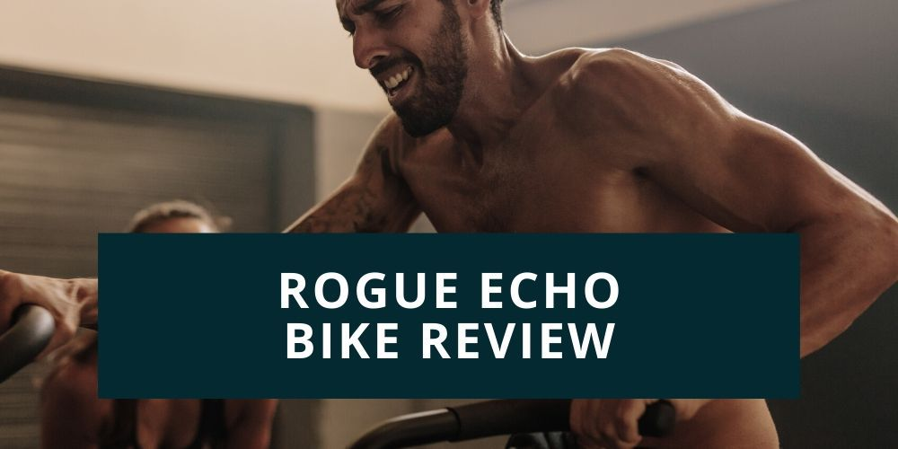 rogue echo bike review