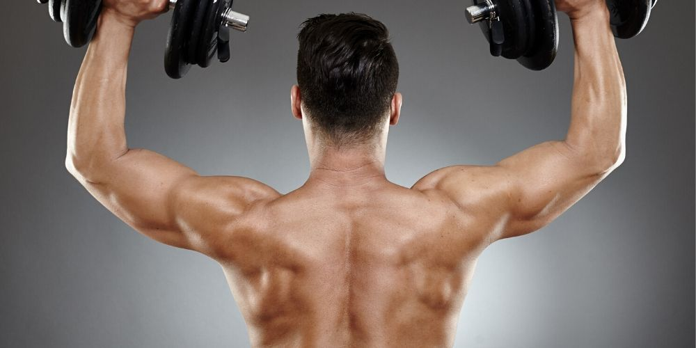 back workouts with dumbbells